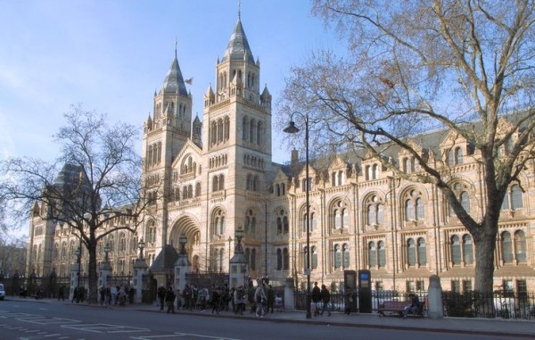 562x374px-Exterior of the Natural History Museum (1)